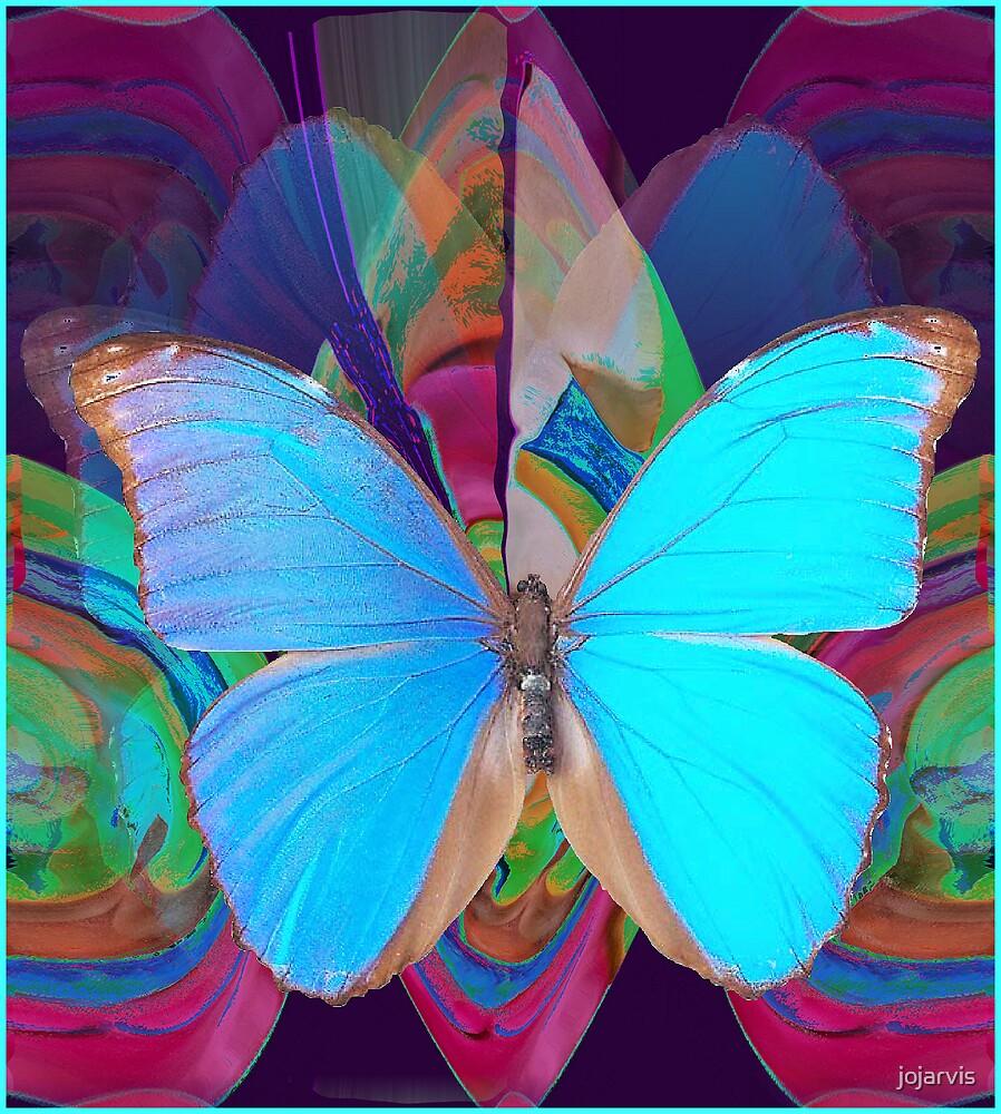 Butterflies In Fall by jojarvis