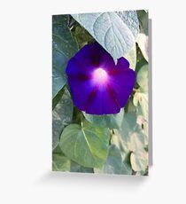 Organic Light Purple Torch Greeting Card