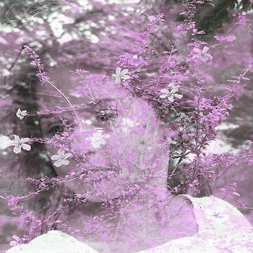 Blossoming by bettycruz