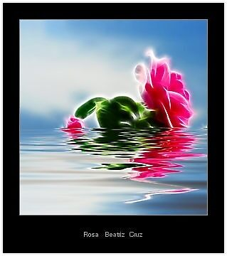 A Rose Awaits You by Beatriz  Cruz