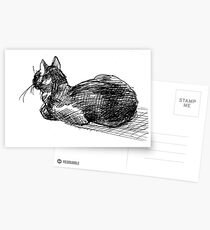 Harley the kitty Postcards