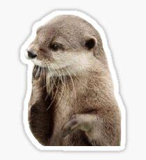 otter sticker Sticker