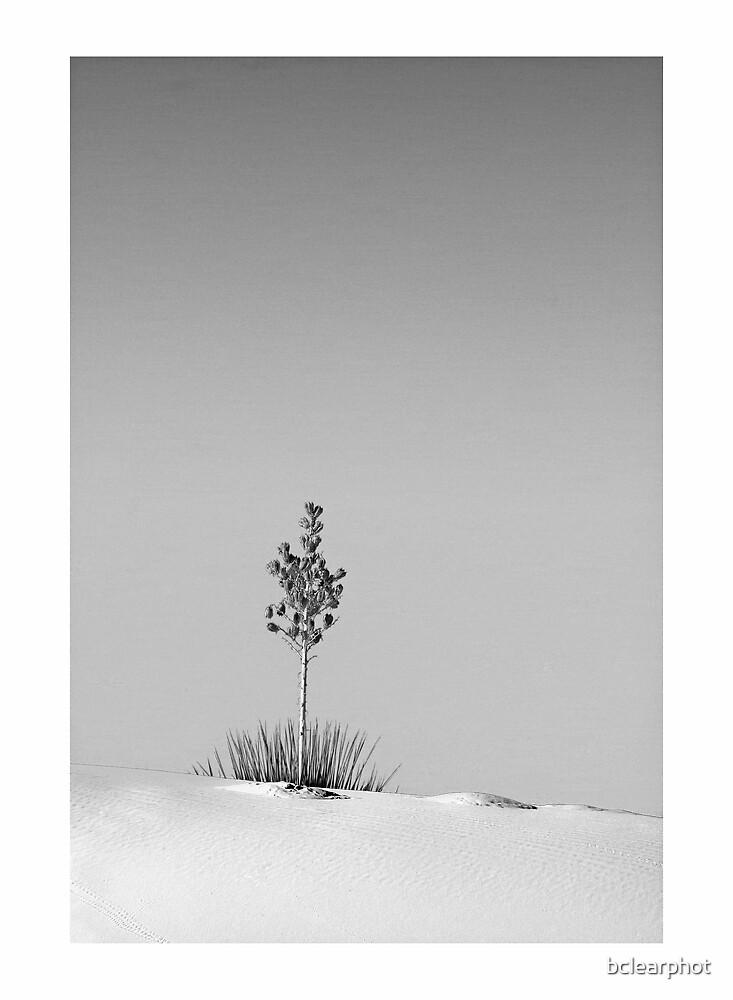 Alone by bclearphot