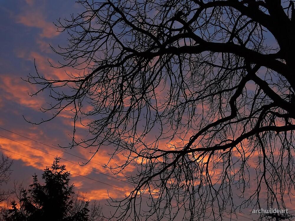 Sky on Fire by archwildeart