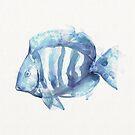 BlueFish by WestPhilly