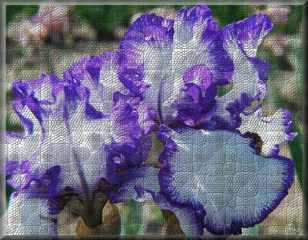 iris by jenke