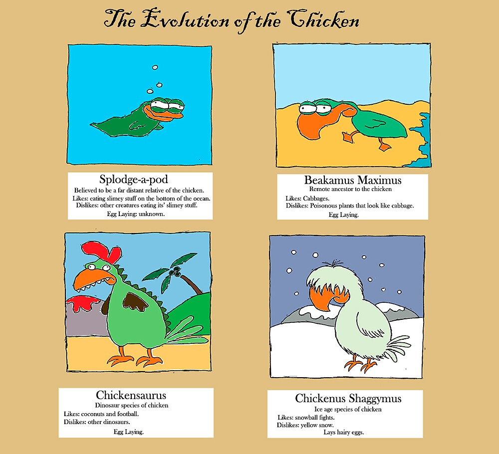 Evolution of the chicken by robotpower