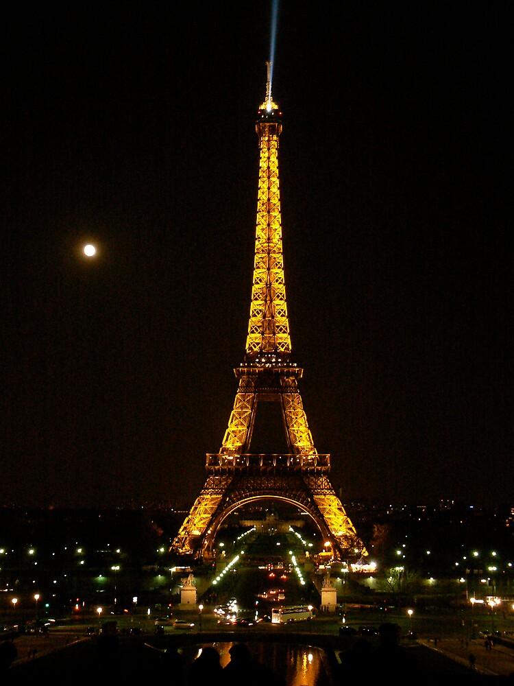 Paris by Moonlight by George Swann