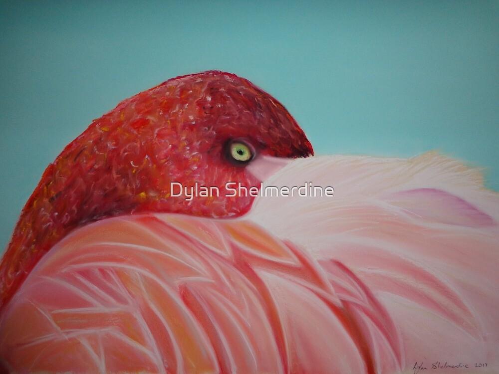 Fleur the flamingo by Dylan Shelmerdine