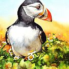 Puffin Patrol by Peter Williams