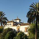 Elegant Spanish Mansion Framed by Palm Trees by Georgia Mizuleva