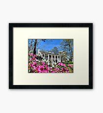Springtime In Alabama Framed Print