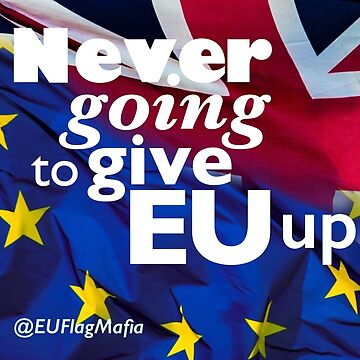 Never Going to Give EU Up by AdamSelene
