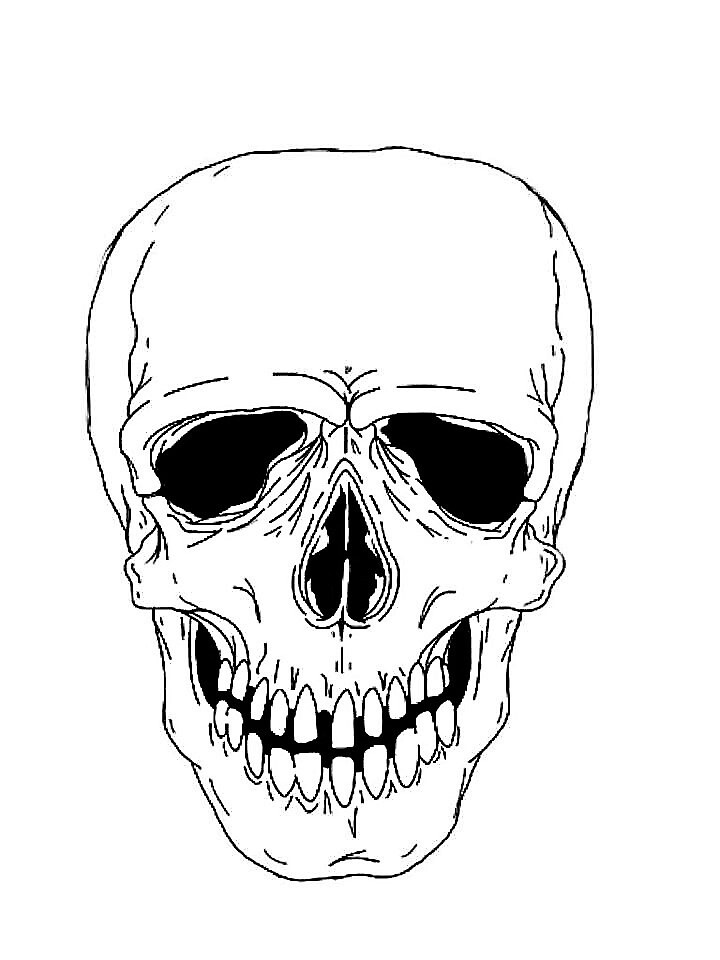 white skull by JDagna
