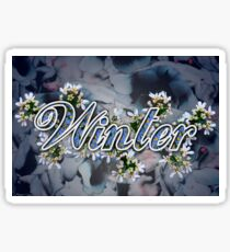 Winter - 4 Seasons Print Range Sticker