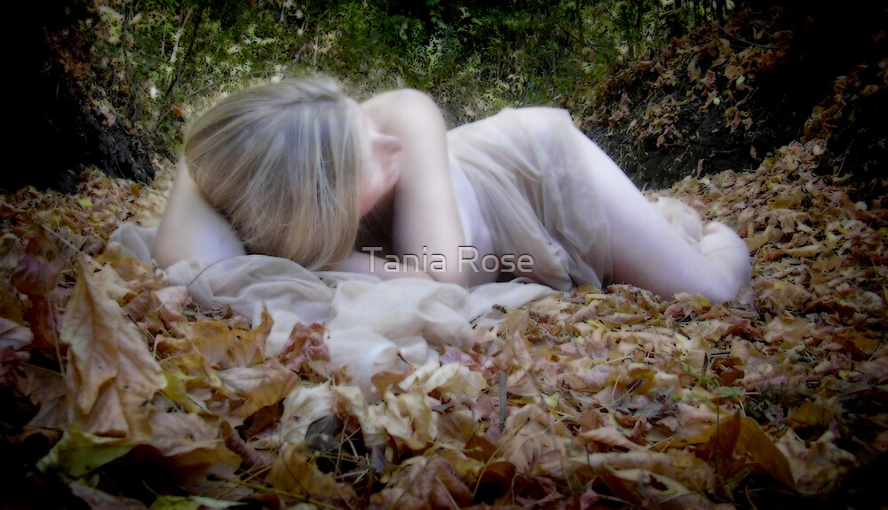 Rebirth by Tania Rose