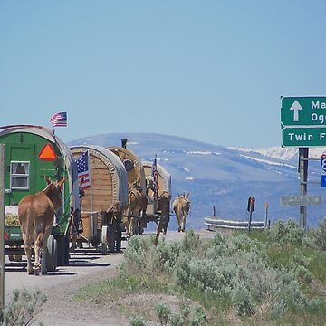 oregon trail ride 2 by conilouz