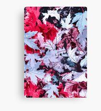 Magical Colors of Autumn Canvas Print