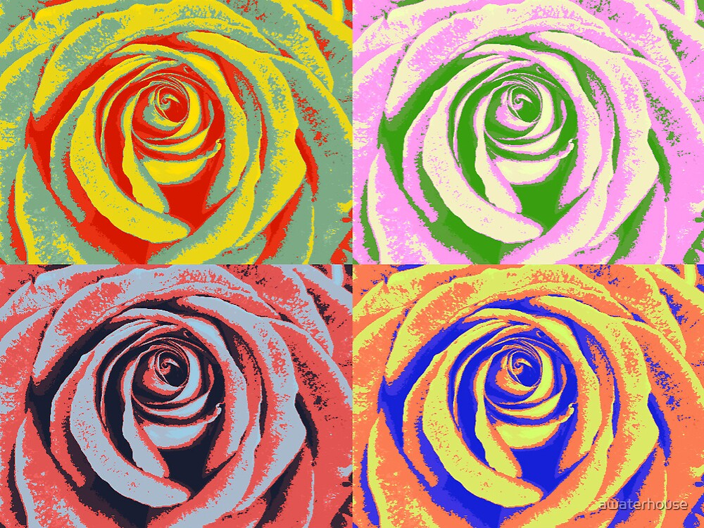 Quot Pop Art Rose Quot By Awaterhouse Redbubble