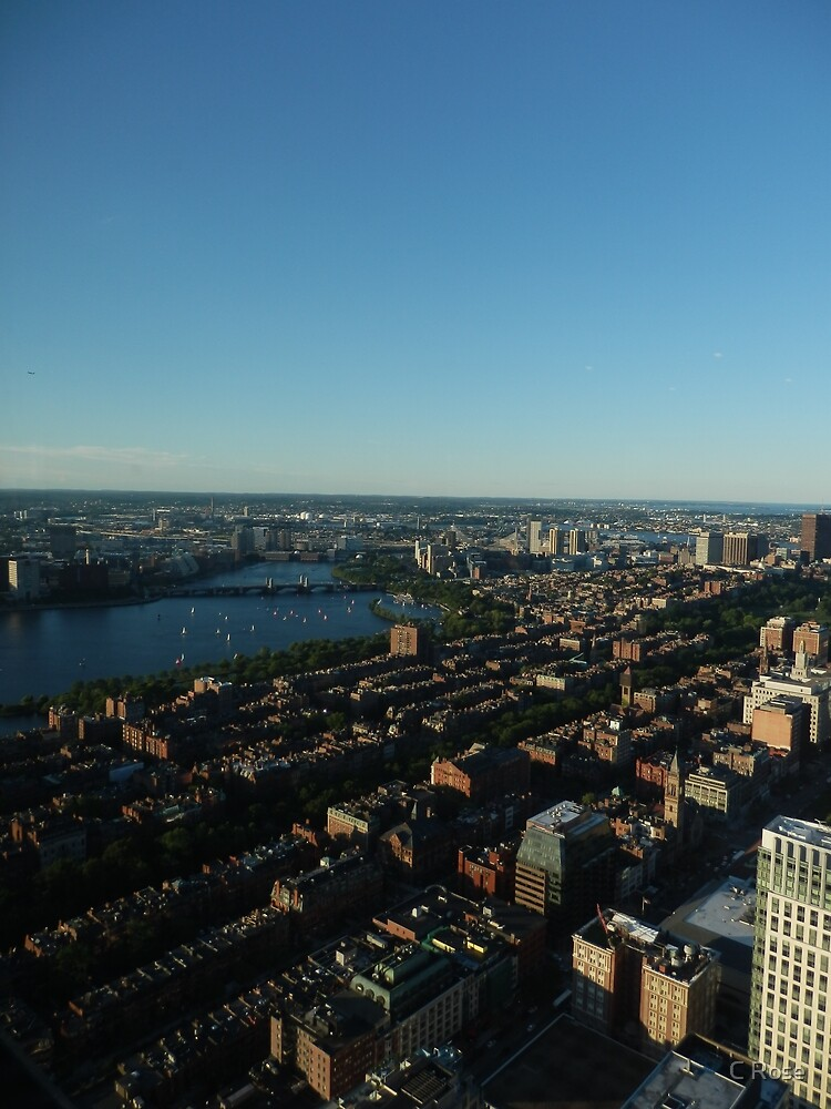 Boston from the Air by bexceli