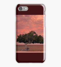 Divi Divi Sunset iPhone Case/Skin