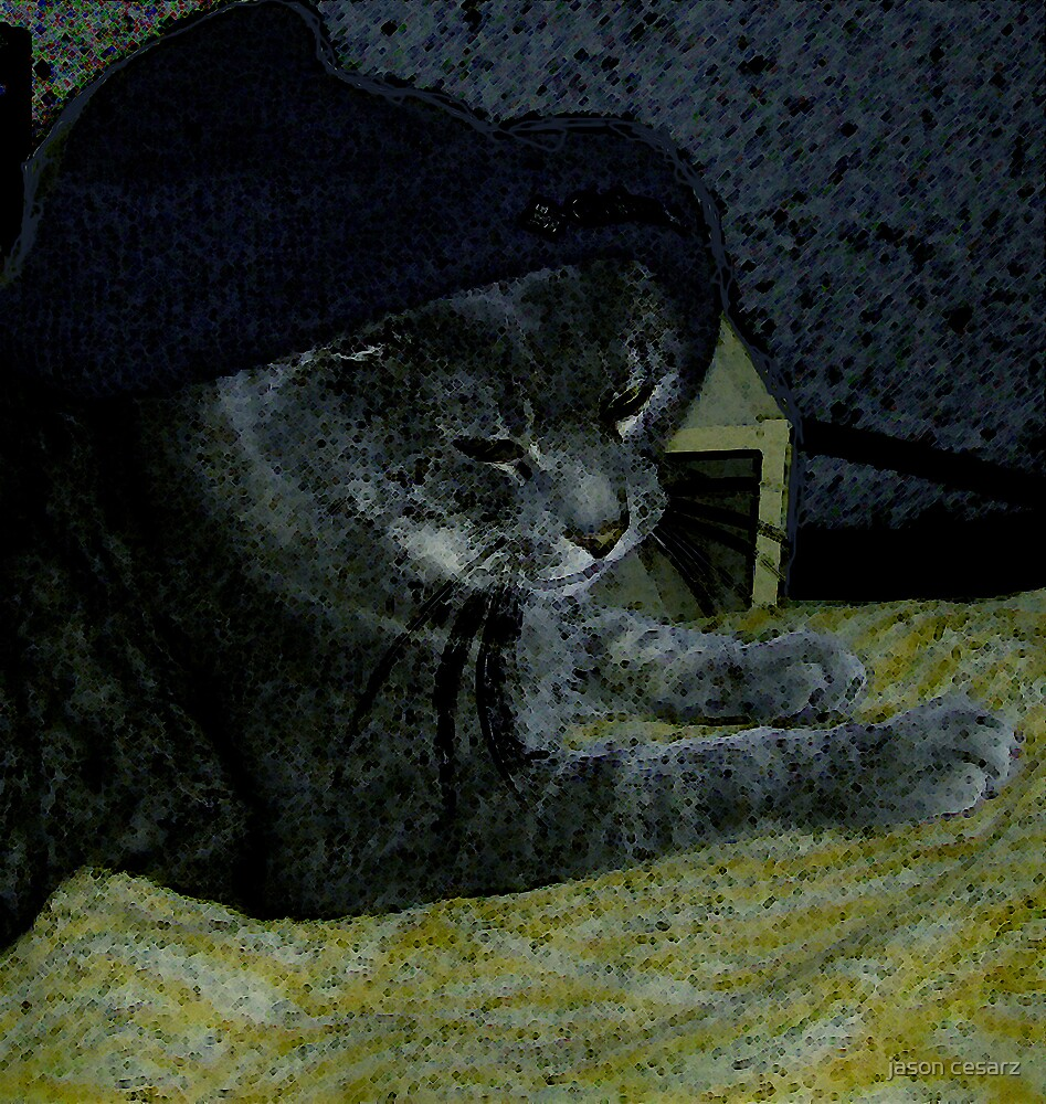 Cat in the Hattoo by jason cesarz