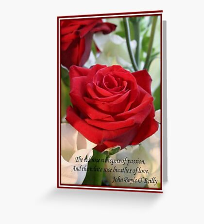 Whispers of Passion and Love Red Rose Greeting Card Greeting Card