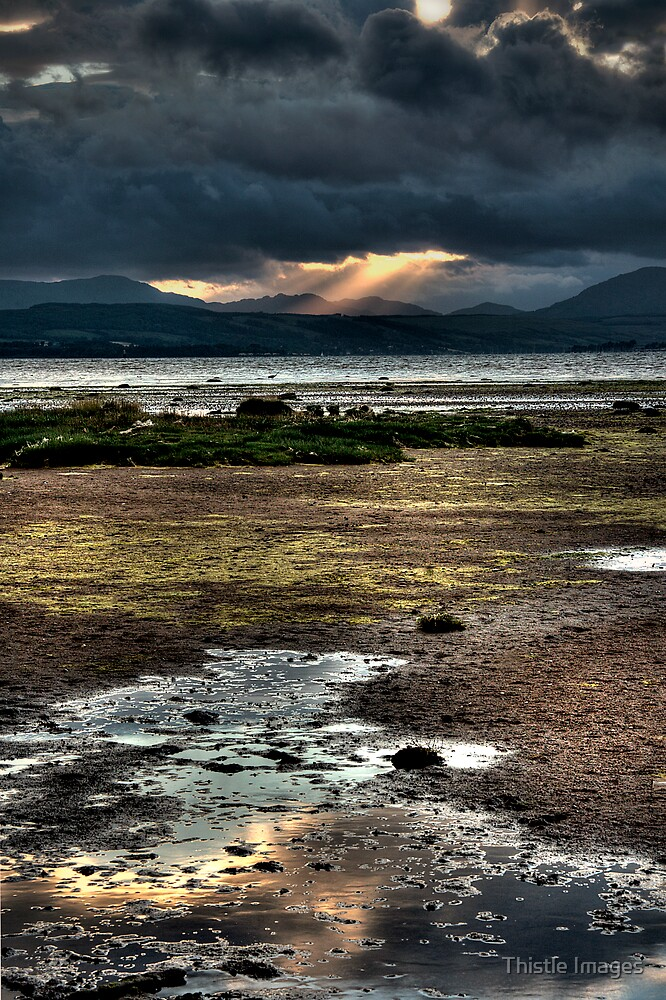 Cardross by Thistle Images