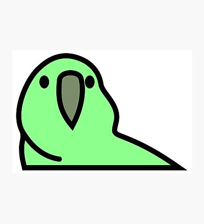 PartyParrot - Green Photographic Print