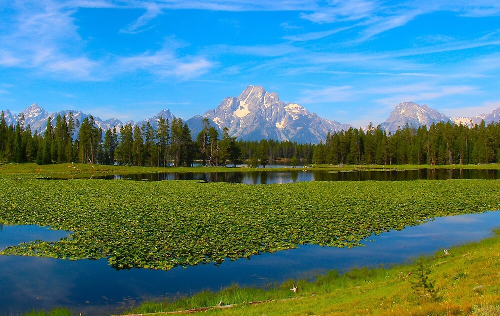 The Grand Tetons  by Cpayneloudon85