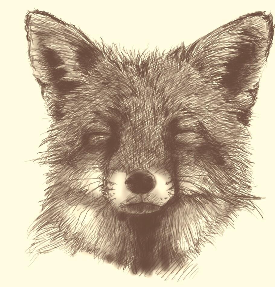 Fox sketch by Lloyd39