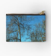 Bare Trees Studio Pouch