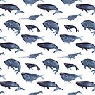 Whales Repeating by permare