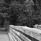 Assabet River Bridge by Pandamatastic