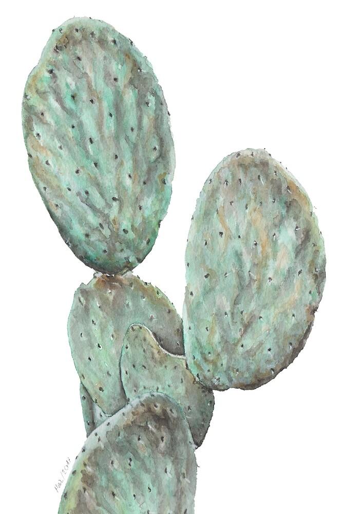 Cactus by marperezcasado