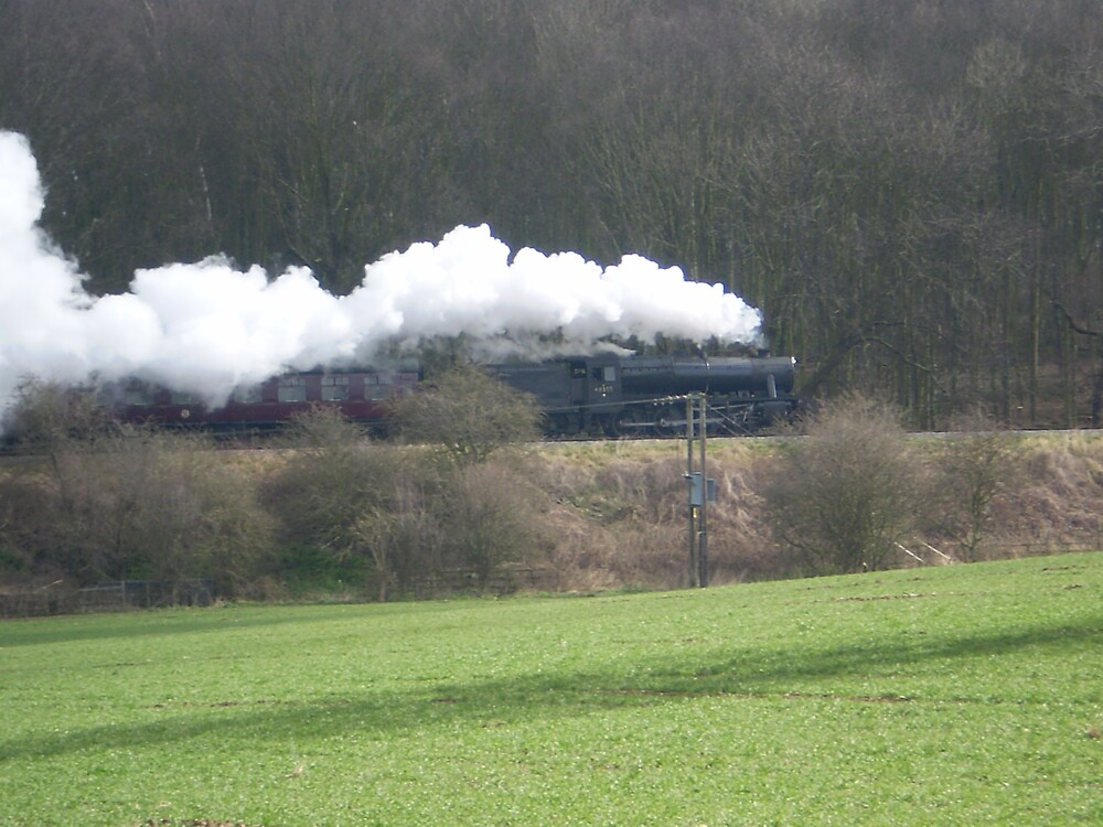 Steaming through the fields by oscars