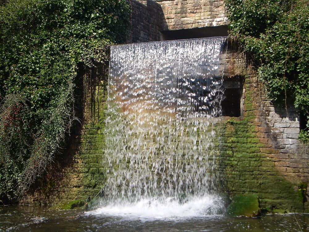 Falling Water by oscars