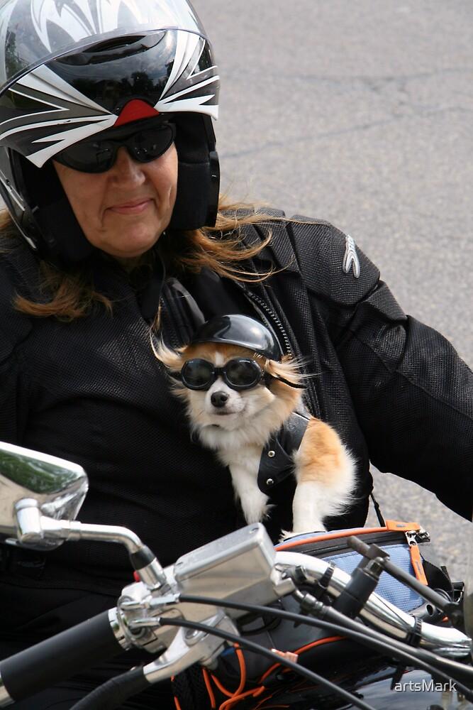 Doggie biker by artsMark
