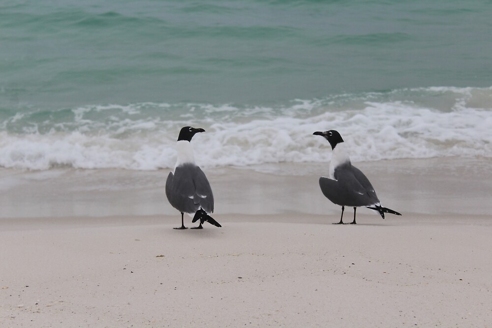 Friendly Birds by Grace Jane