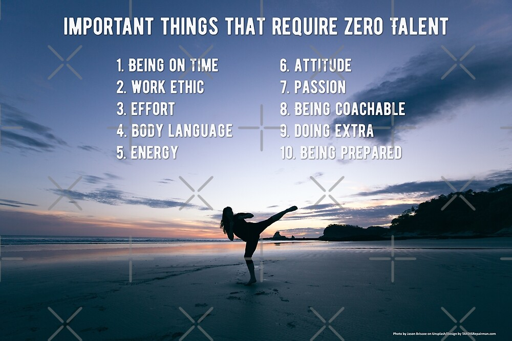 Important Things that Require Zero Talent by TARDISRepairman