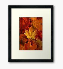Autumnal Magic Carpet Framed Print