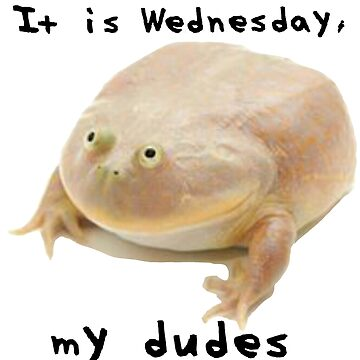 It is Wednesday my dudes by ChevDesign