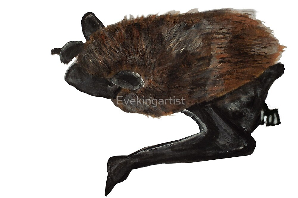 Beautiful bat by Eve King