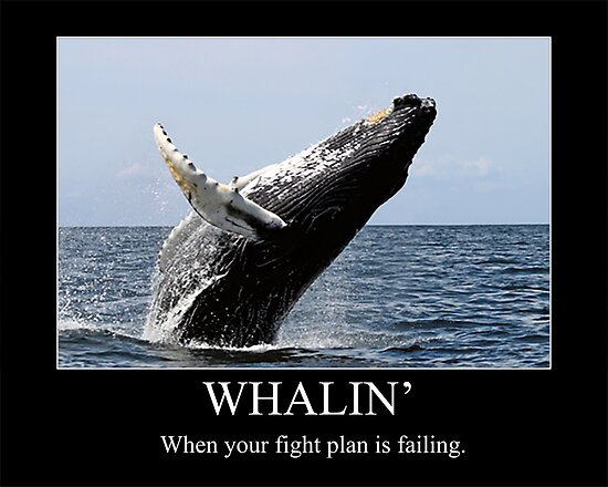 Whalin': When Your Fight Plan Is Failing! by BrandAM