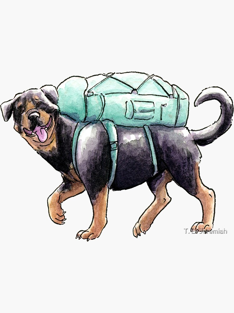 Summer Dog: Rottweiler by leslieawicke
