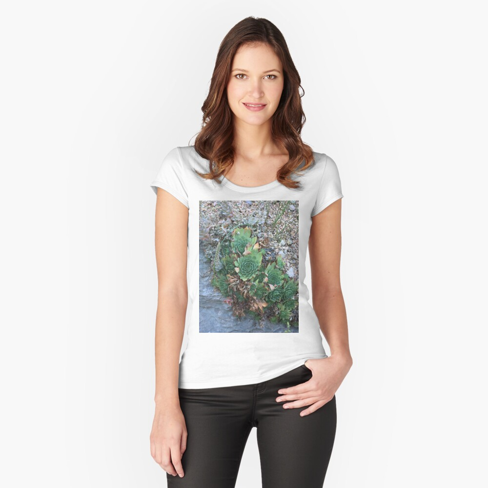 Succulent  Women's Fitted Scoop T-Shirt Front