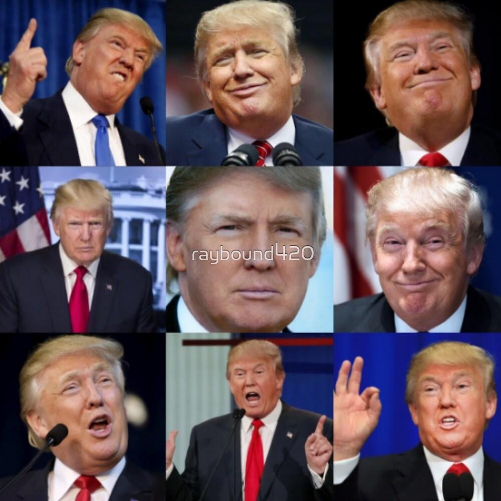 Donald Trump  by raybound420