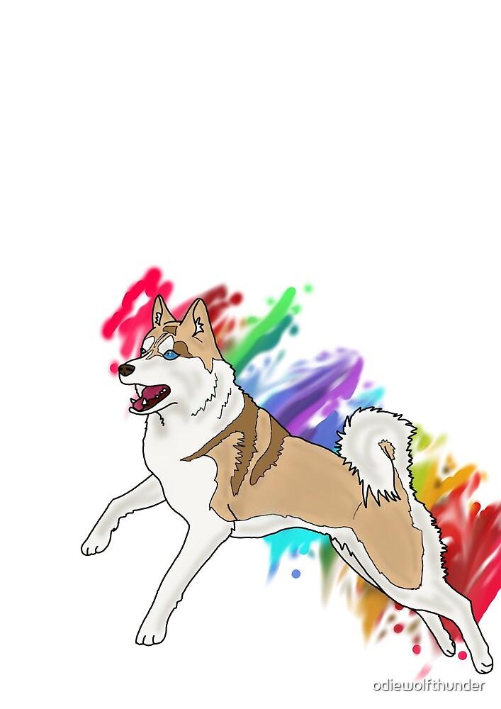 Rainbow Run by odiewolfthunder
