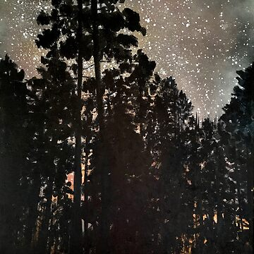 A night in the redwood by Wonju