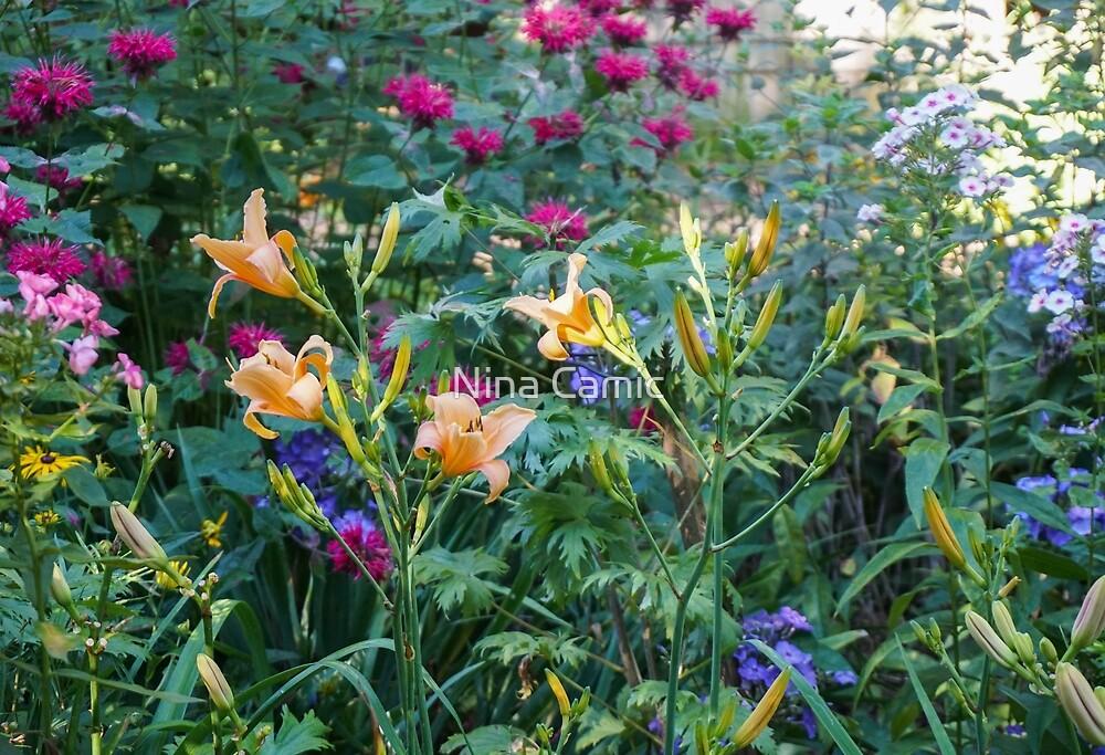 a July garden by Nina Camic